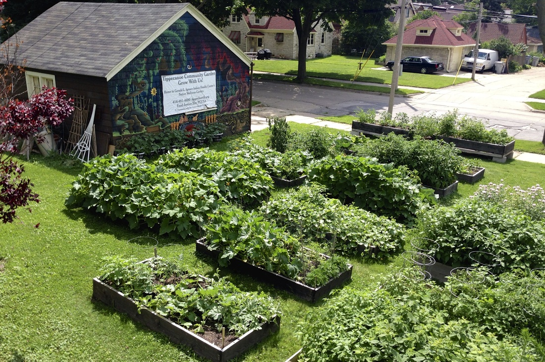 Rooftop Pantry Gardenfood justice in bloom Tippecanoe